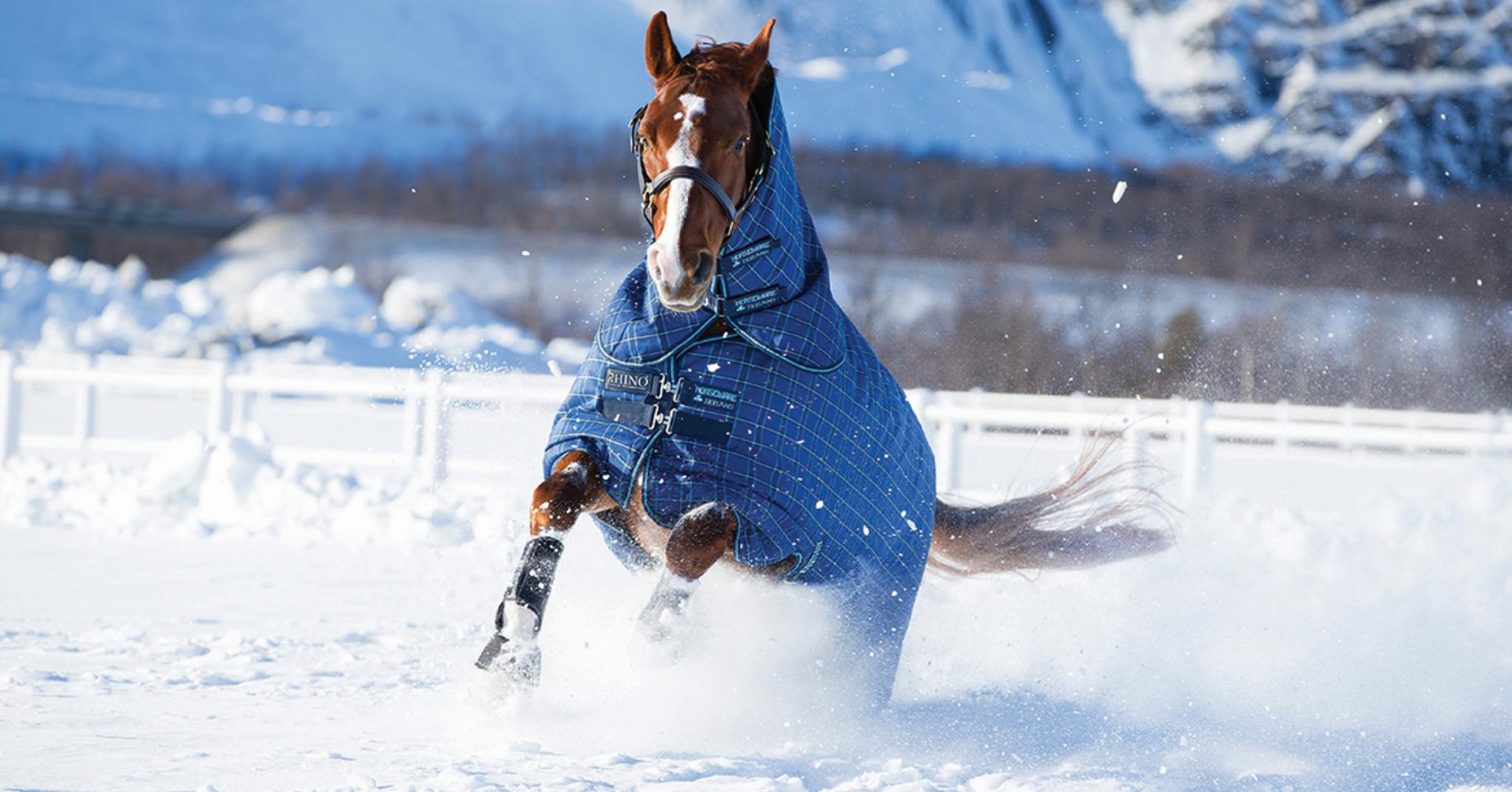 Horseware_02-1.jpg